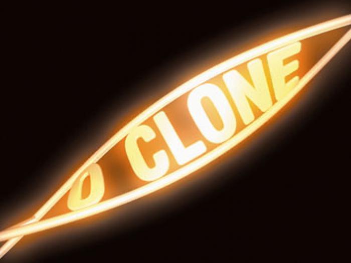 """Resumo Novela """"O Clone"""": resumo dos próximos capítulos."""